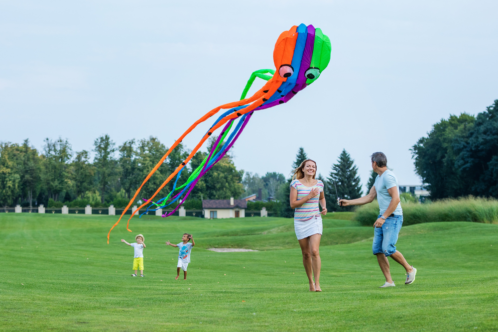 5 Easy Steps to Turn You Into a Kite Flying Enthusiast