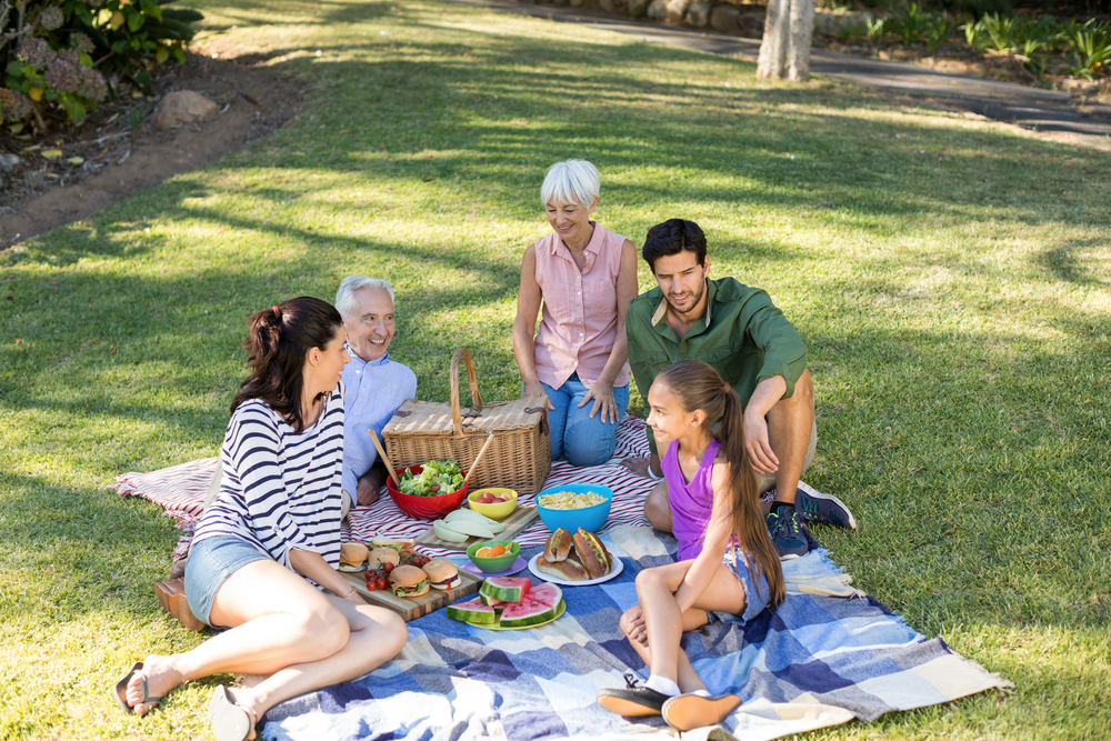 How to Have a Perfect Picnic Lunch with Your Family