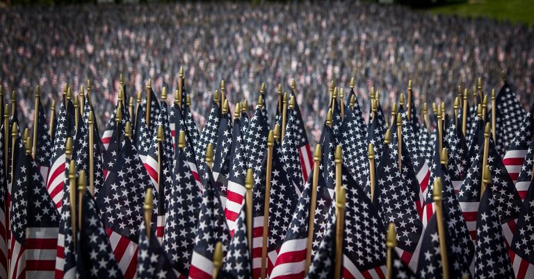 Hundreds of American flags on memorial day