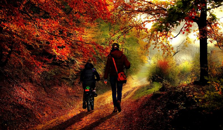 Some fitness challenge ideas - Mother and daughter walking and bike riding through the forest.